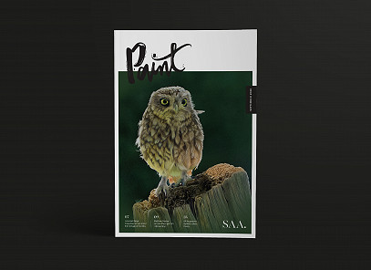 Paint Magazine Design by Root Studio