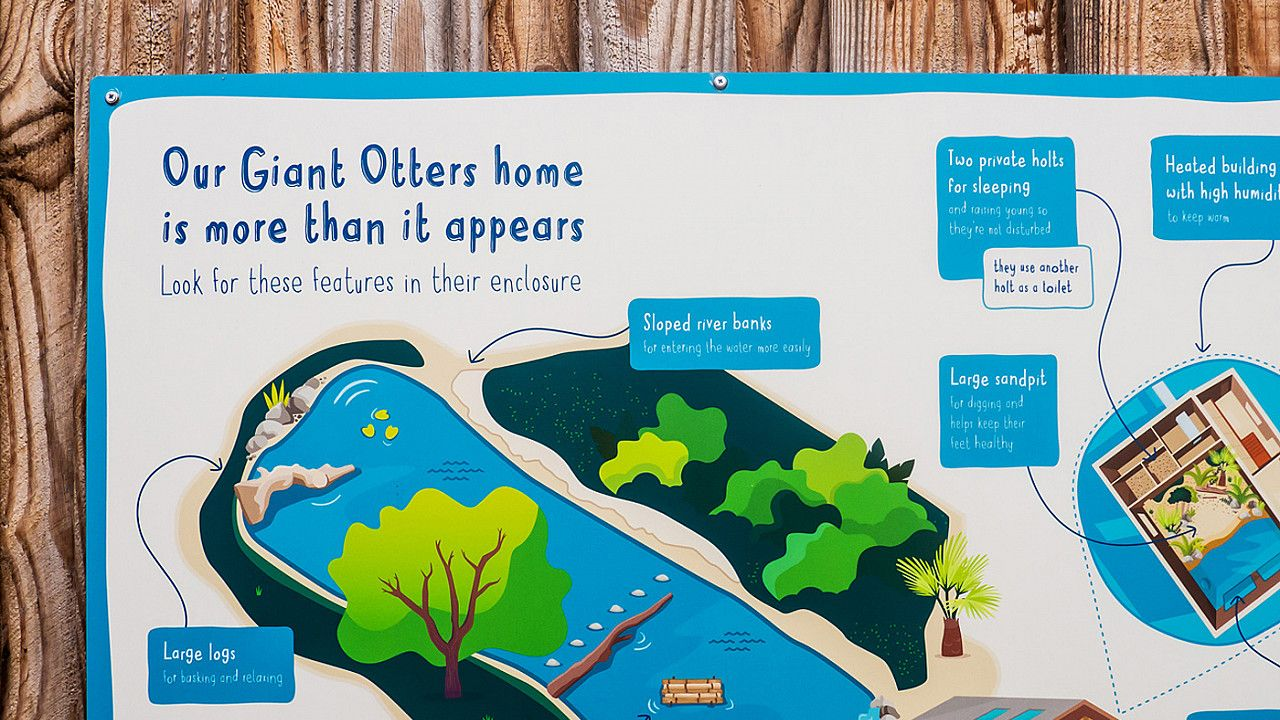 Chester Zoo enclosure interpretation design