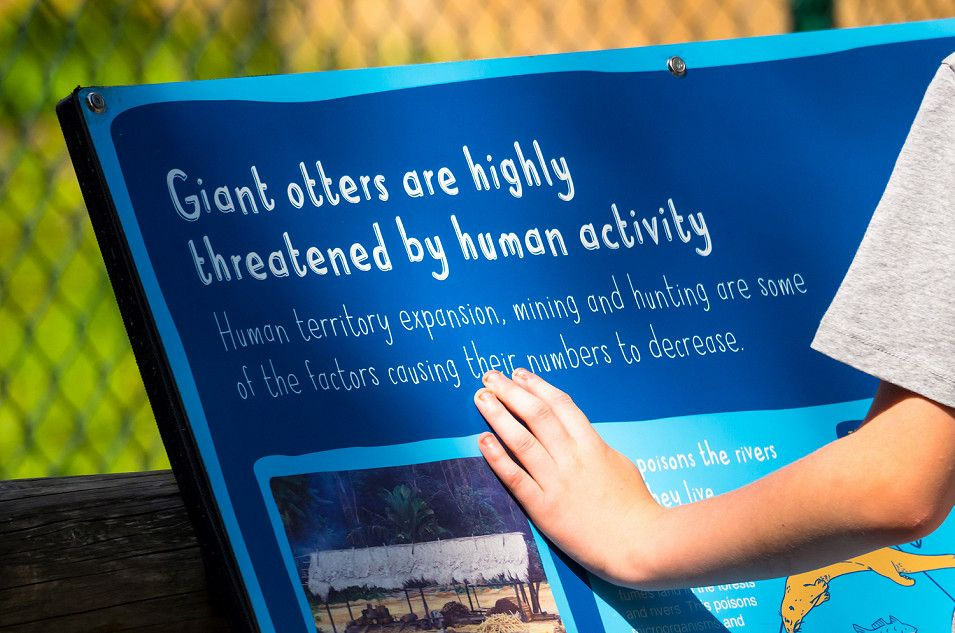 Chester Zoo interpretation panel / information sign by Root Studio