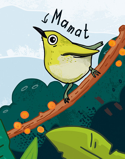 Chester Zoo Indonesian Songbird children's illustrated bird character