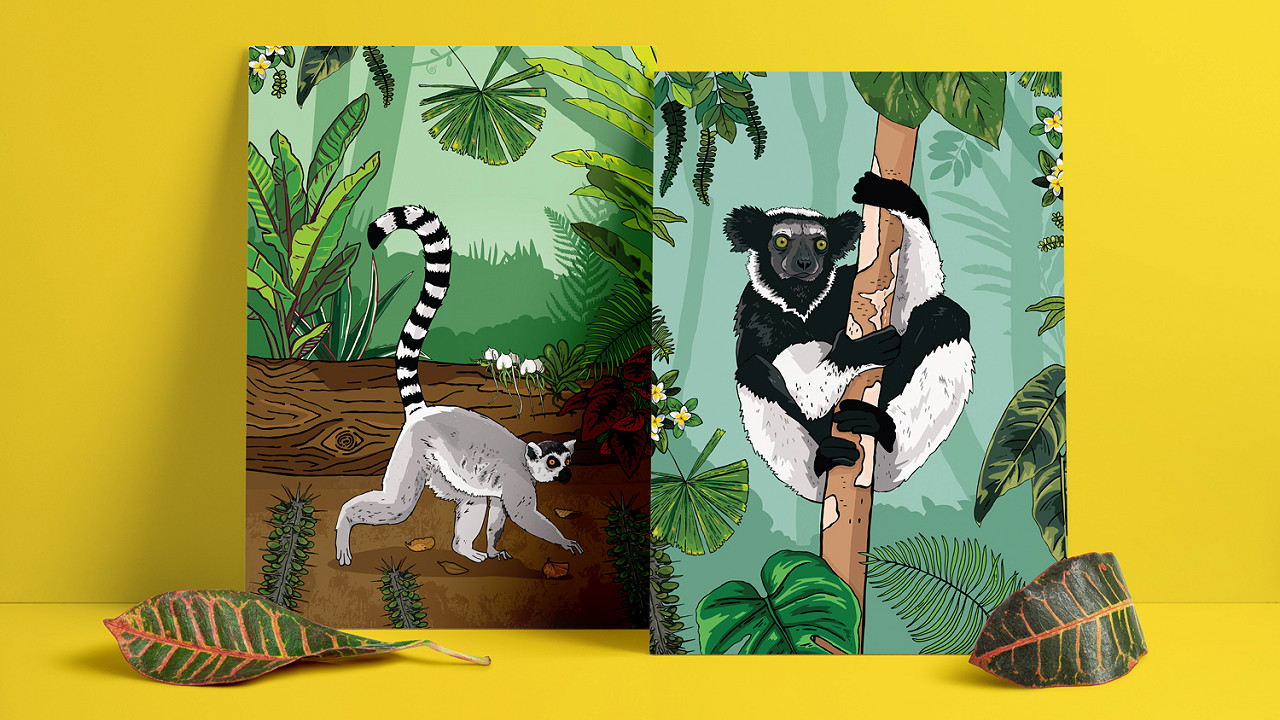 Chester Zoo Lemur illustrations with jungle backgrounds
