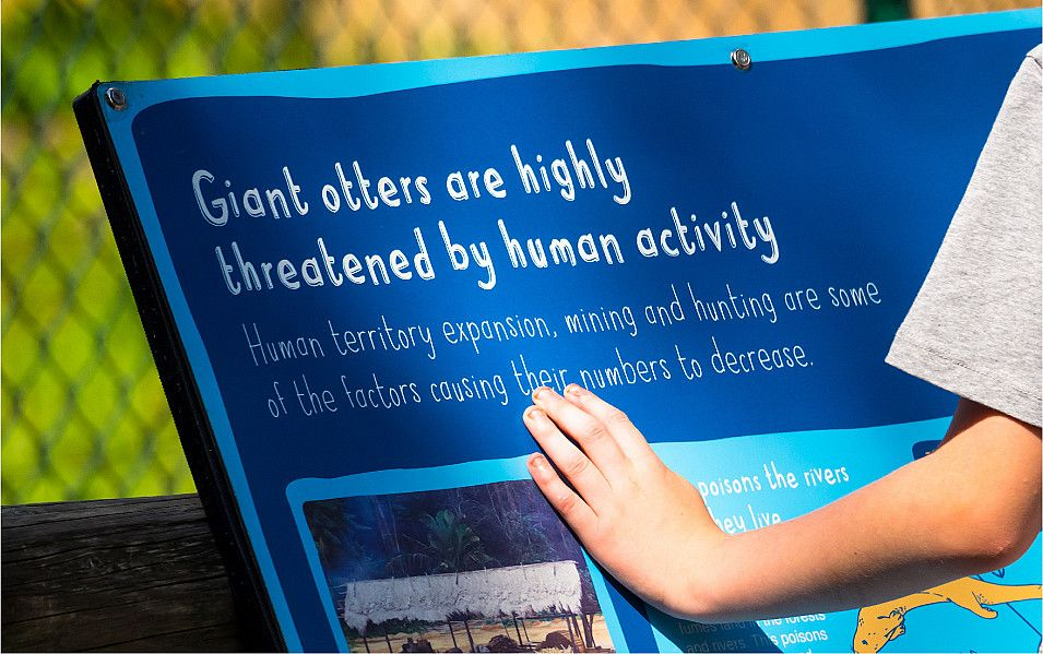 Chester Zoo interpretation signage design by Root Studio